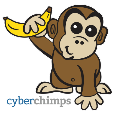 CyberChimps Responsive WordPress Themes Has Been Acquired by Hummingbird Web Solutions
