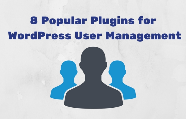Popular Plugins for WordPress User Management