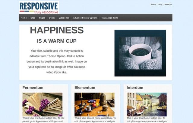 CyberChimps' Responsive WordPress theme