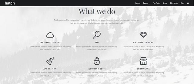 immensely versatile multipurpose WordPress theme