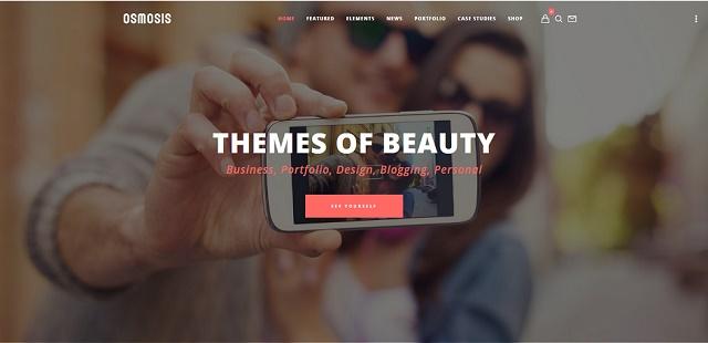 flexible and responsive multipurpose WordPress theme