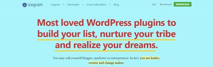 Increase Conversions on Your WordPress Website