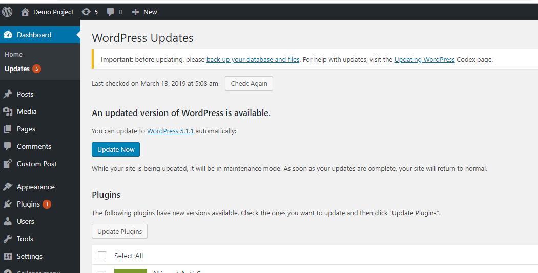 Method1- Updating WordPress