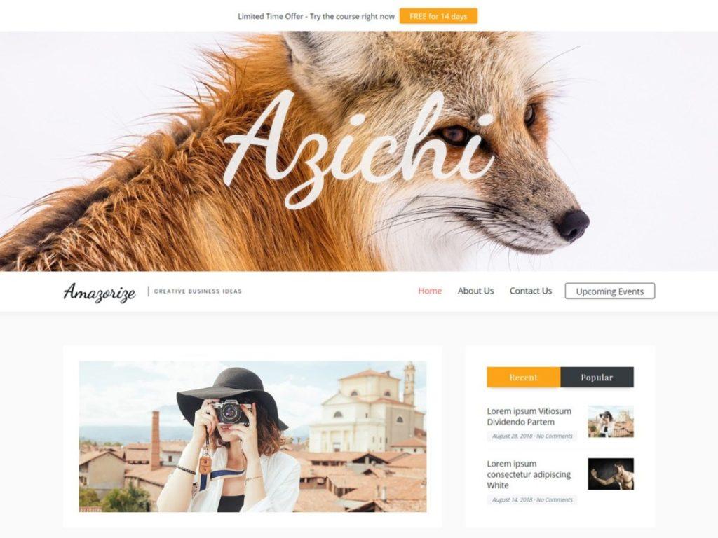Amazorize- Blog Free WordPress theme