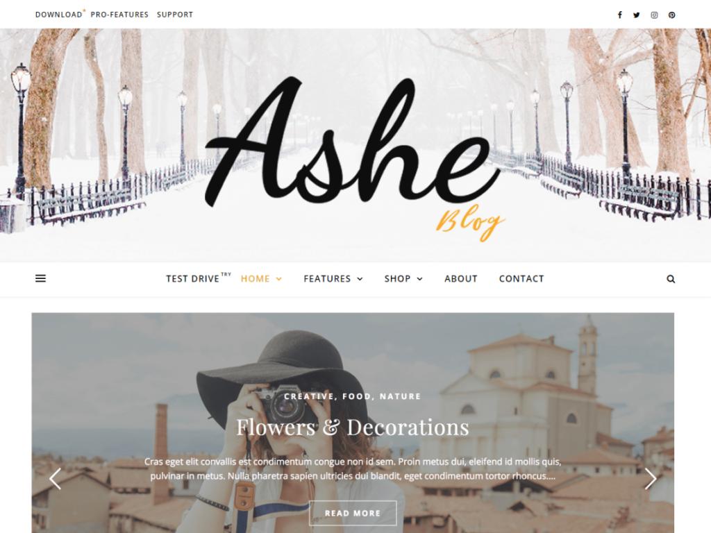 Ashe - Free WordPress Theme