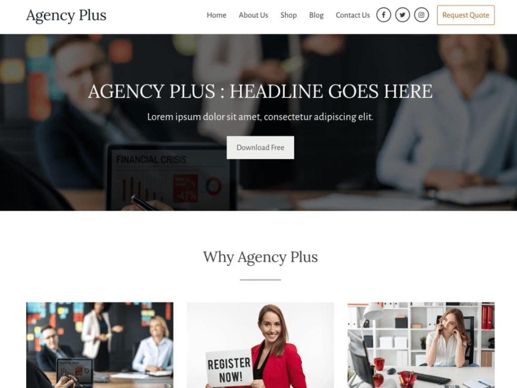 https://wordpress.org/themes/agency-plus/
