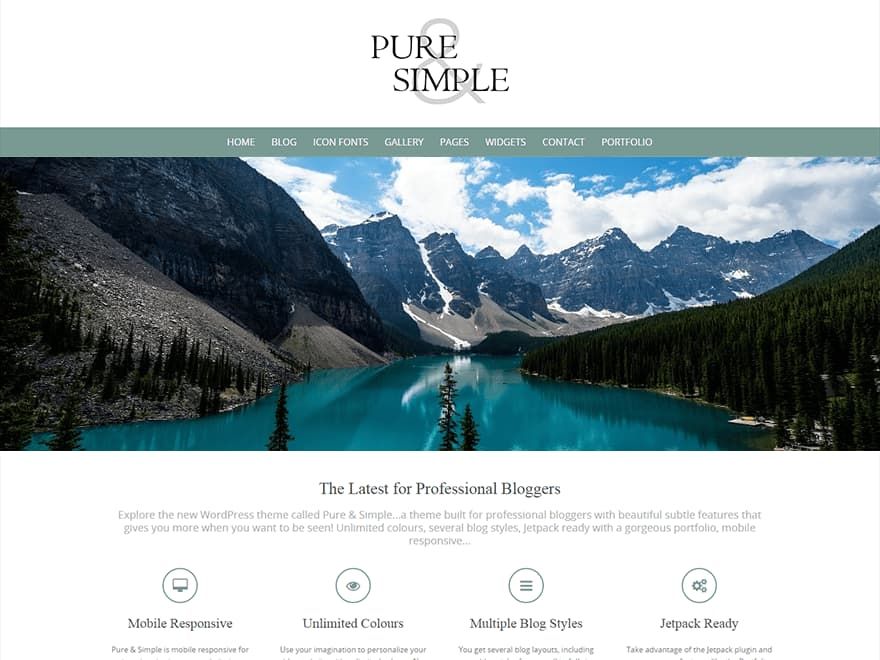 Pure and simple WordPress blog Theme