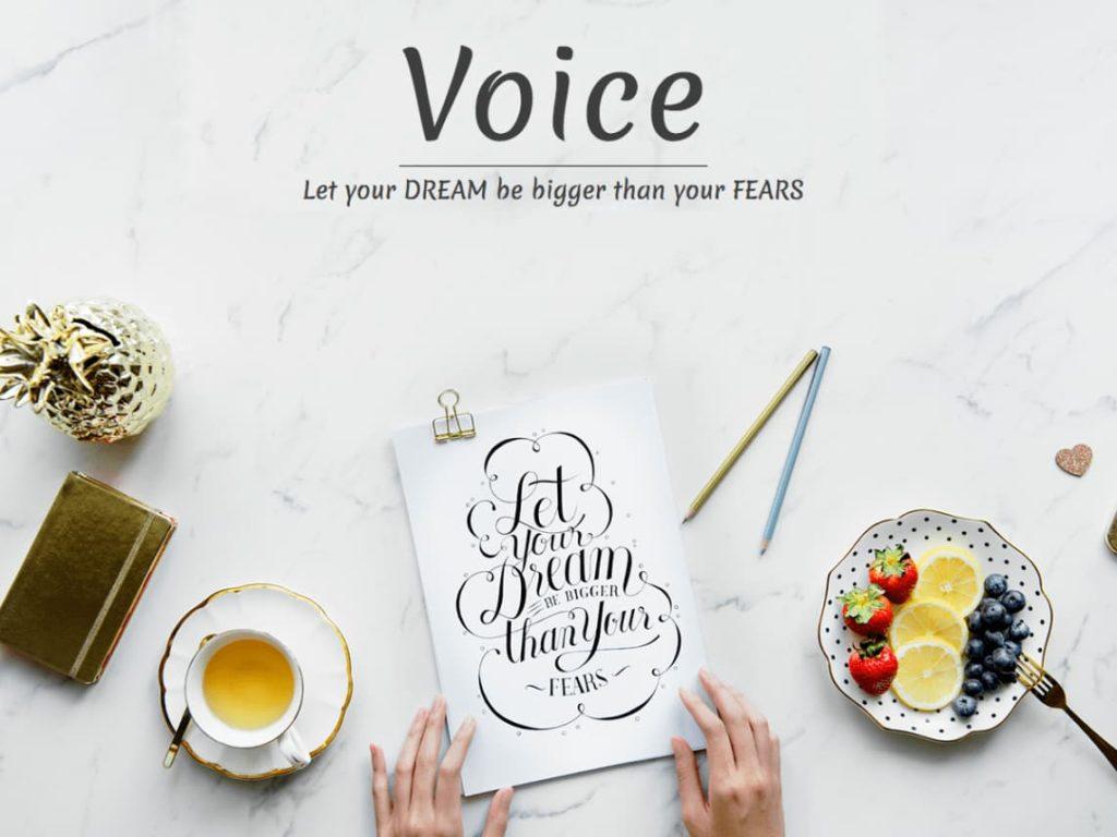 Voice Blog - Free WordPress Blog theme