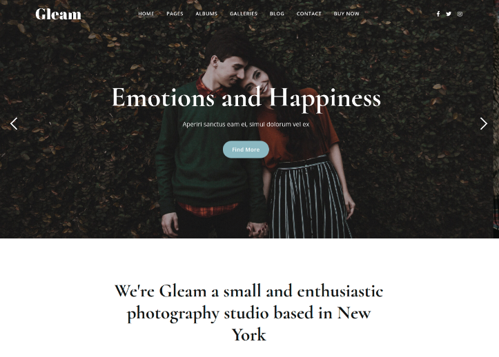 Gleam Theme For Photographers