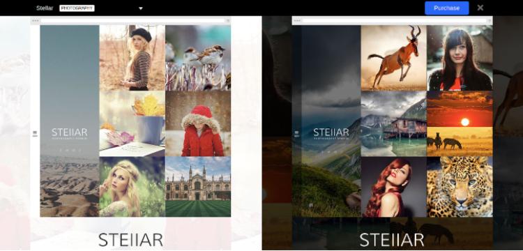 Stellar WordPress Photography Theme