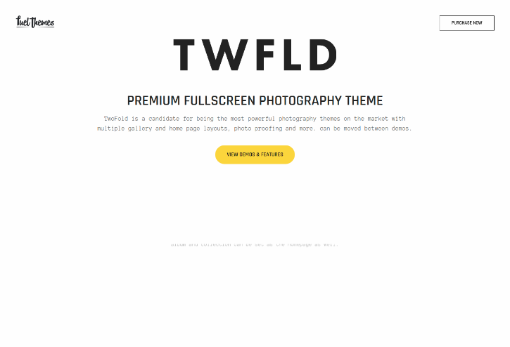 TwoFold Theme For Photographers
