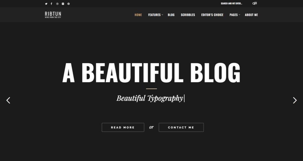 RibTub- WordPress theme for writers
