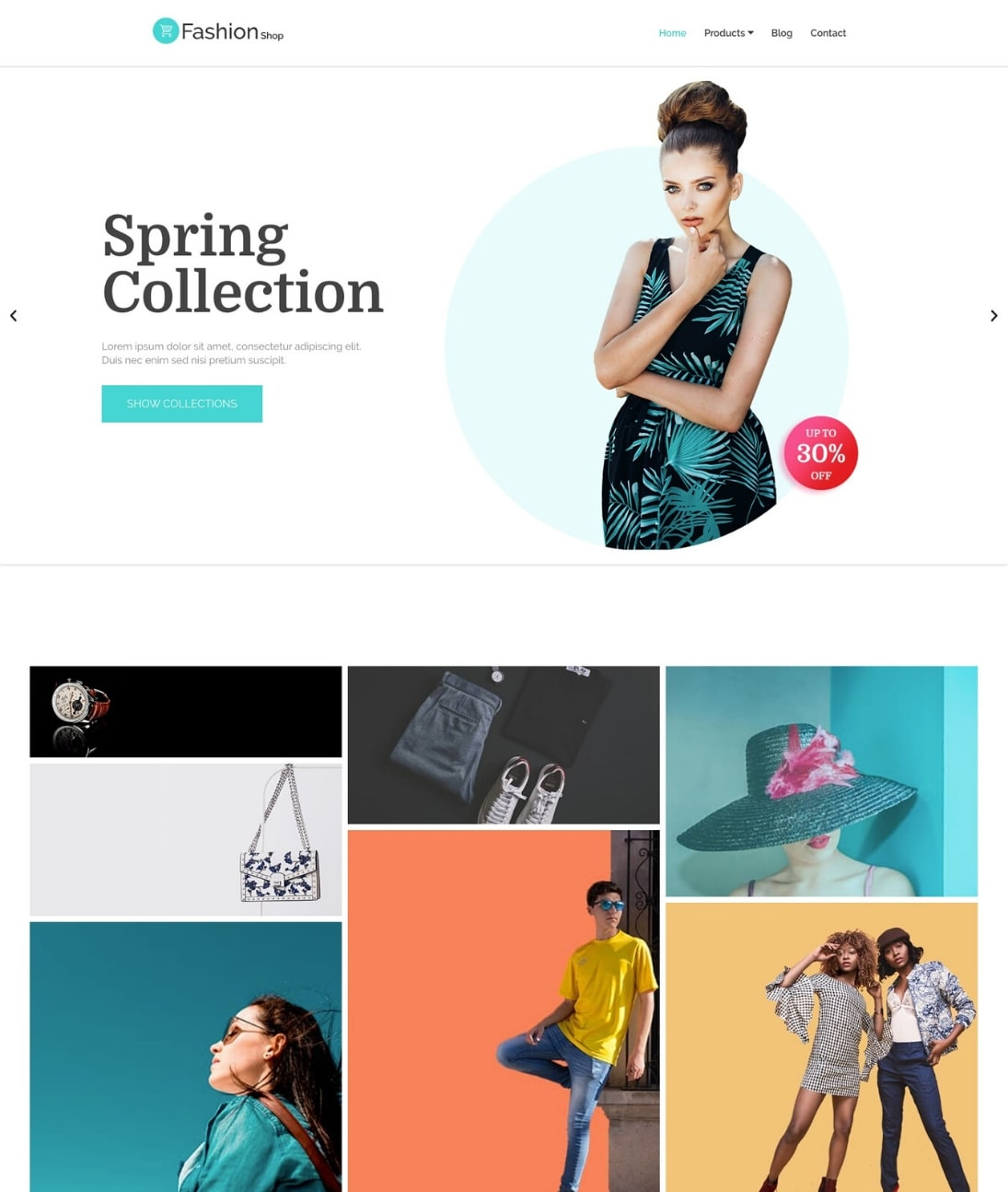 WordPress clothing store theme