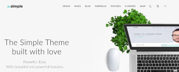 The simple- WordPress Theme For Business