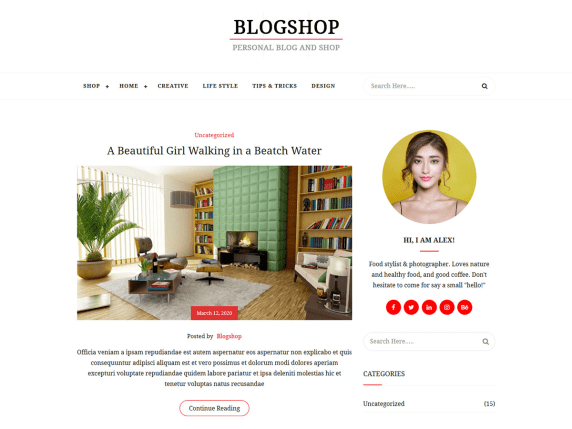 BlogShop- WooCommerce theme