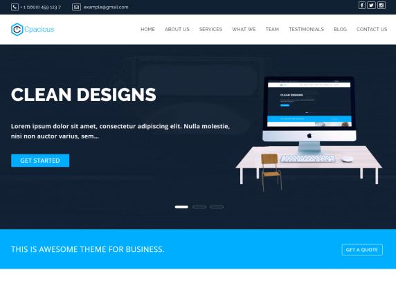 Capacious- WordPress theme