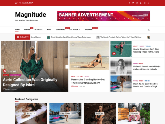 Magnitude- free WooCommerce theme