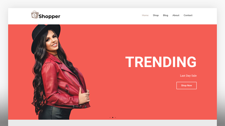 Ecommerce Fashion- WordPress website template