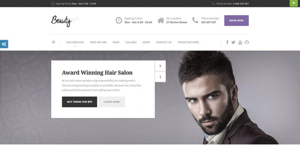 Beauty- WordPress theme
