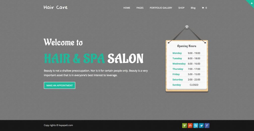Hair Care- WordPress theme