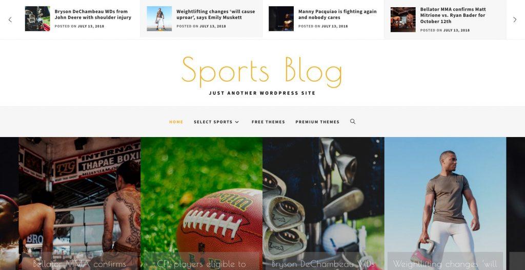 Sports Blog- WordPress sports blog theme