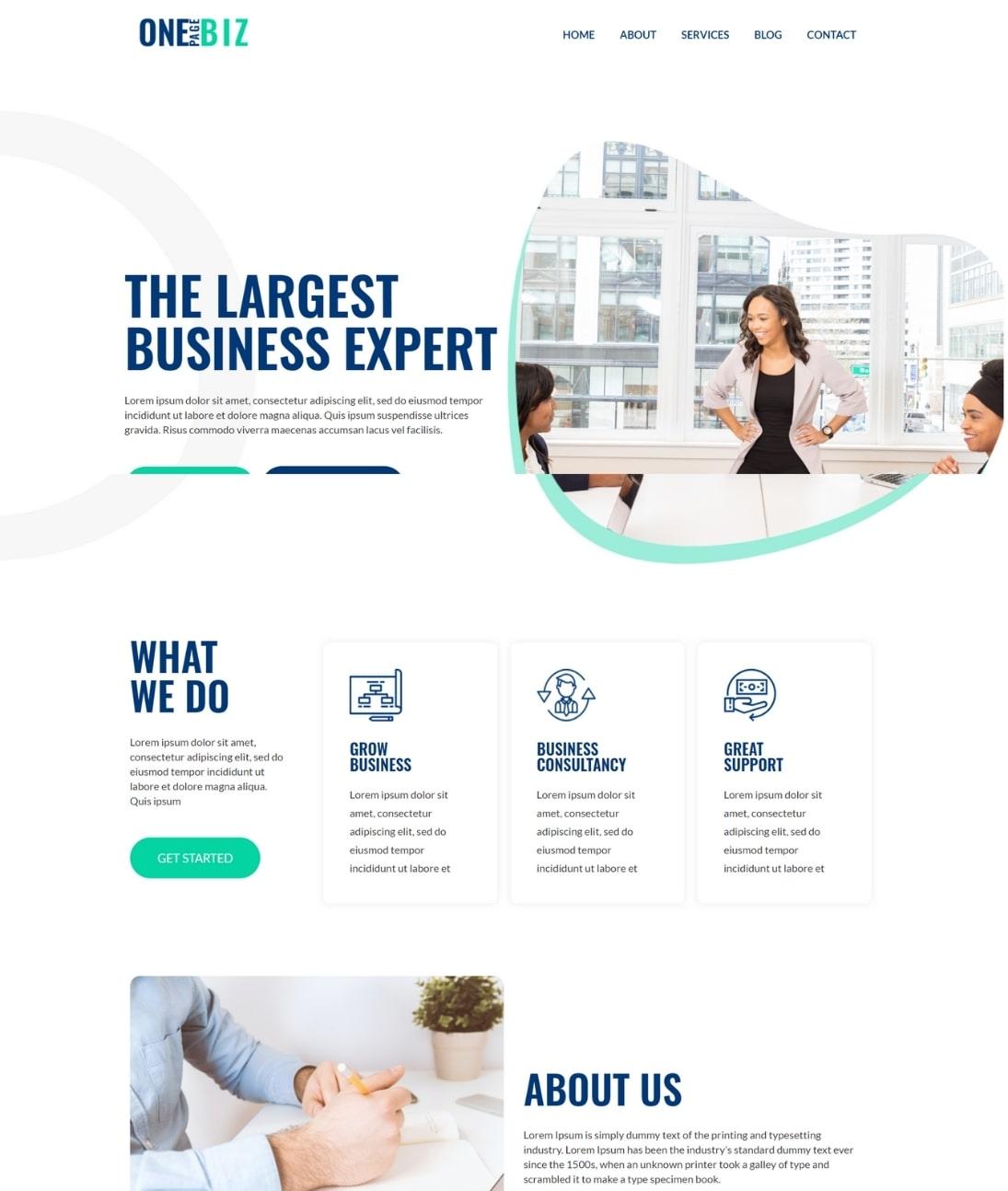 One page WordPress theme- Demo