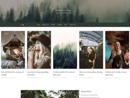 Feminine Blog- Free WordPress Blog theme