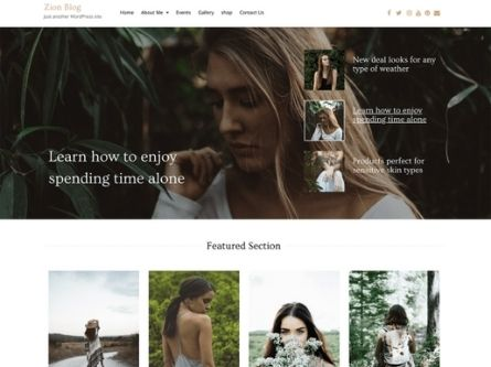 Zion Blog- Blog WordPress theme